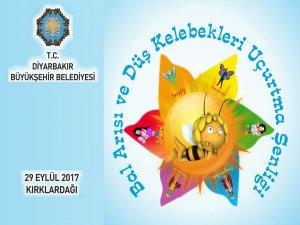 Belediyeden 'Bal Arısı ve Düş Kelebekleri Projesi'