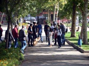 Diyarbakır'da cezaevi firarisi kaçtı, polis kovaladı