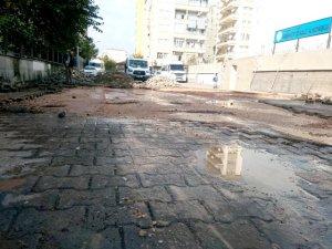 Tigris Haber yazdı, belediye harekete geçti