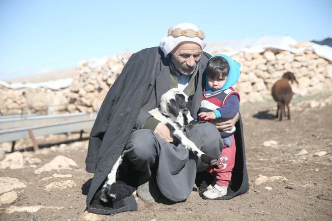 Göçer Ali'nin hayvancılıkla geçen ömrü