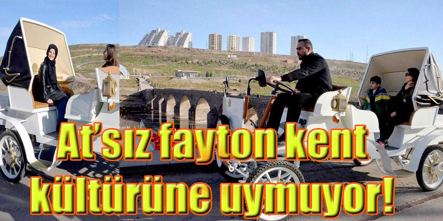 At'sız fayton kent kültürüne uymuyor!