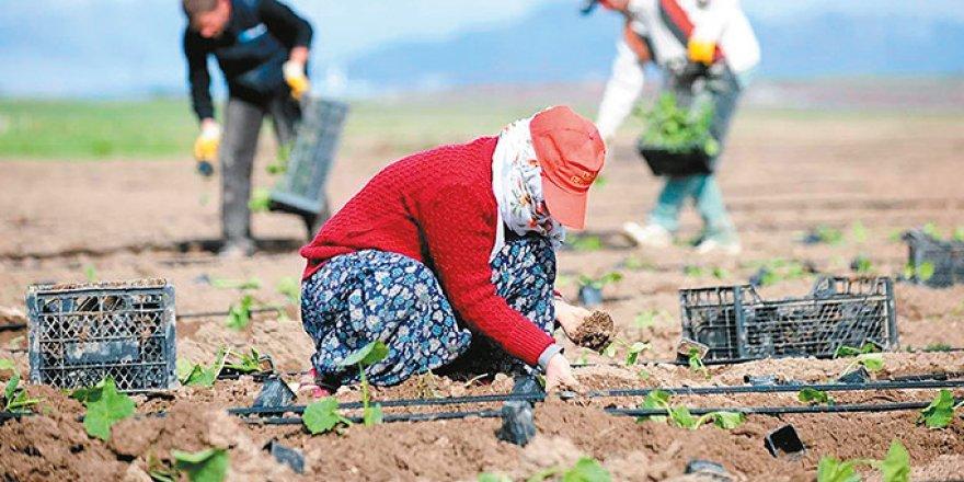 Çiftçinin mazot desteği arttı gübre sabit kaldı