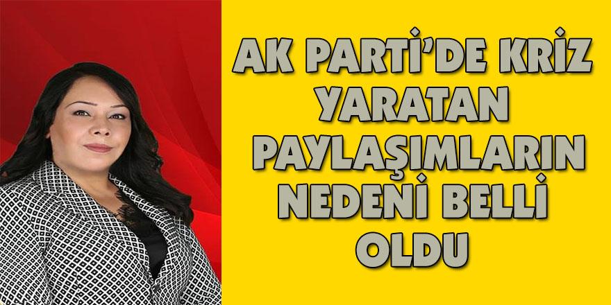 AK Parti'de kriz yaratan paylaşımların nedeni belli oldu