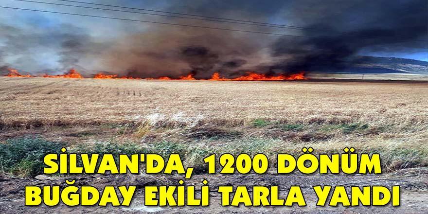 Silvan'da, 1200 dönüm buğday ekili tarla yandı