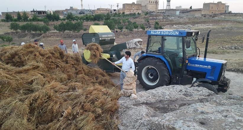 Vekillik bitince, köydeki tarla işlerine döndü