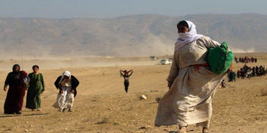 IŞİD'in elindeki Ezidiler için eylem çağrısı