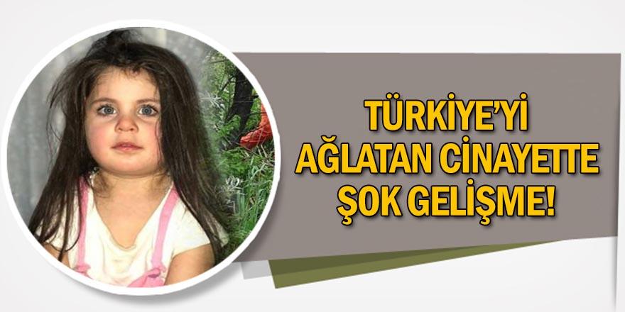 Ağrı Baro Başkanı: Leyla'nın cinayetinde fail tek kişi değil