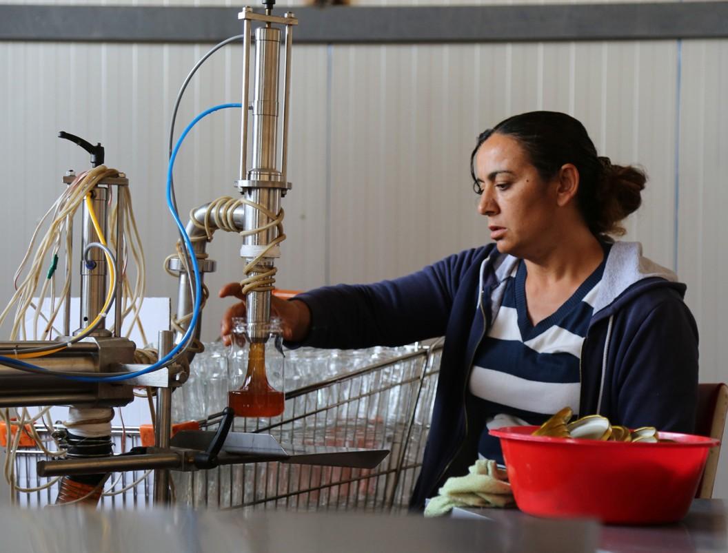 Tunceli'den İngiltere ve ABD'ye bal ihracatı