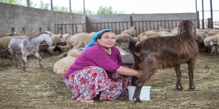 """""""Dünya Kadın Çiftçiler Günü"""""""