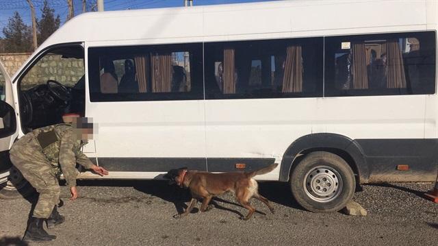 VİDEO- Diyarbakır'da Minibüste 249 Kilo Esrar Ele Geçti