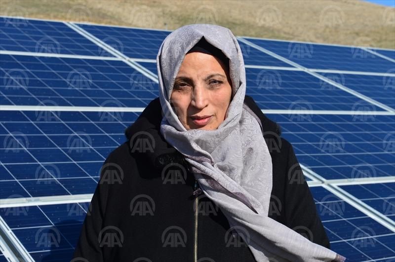 """Kadın girişimci arazisini """"güneş tarlası""""na çevirdi"""