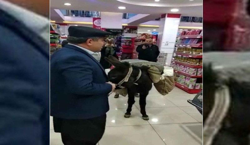 Şov için eşekle alışveriş yapan market sahibine ceza