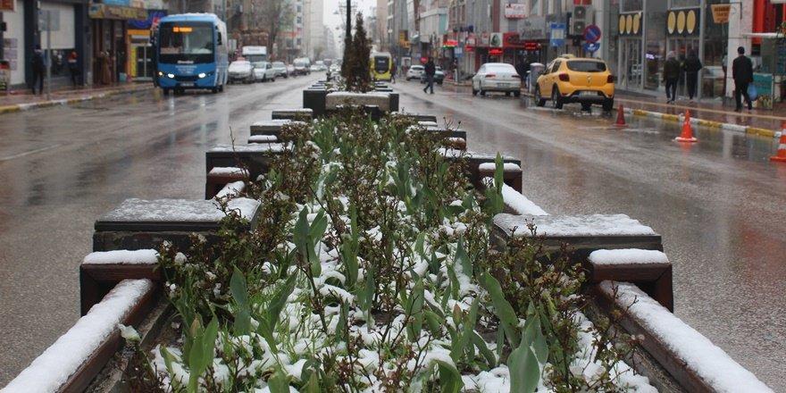 Nisan ayında kar Van'ı beyaza bürüdü