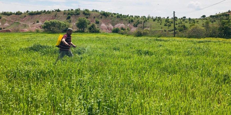 Diyarbakırlı çiftçi sırt pompasıyla ilaçlama yaptı