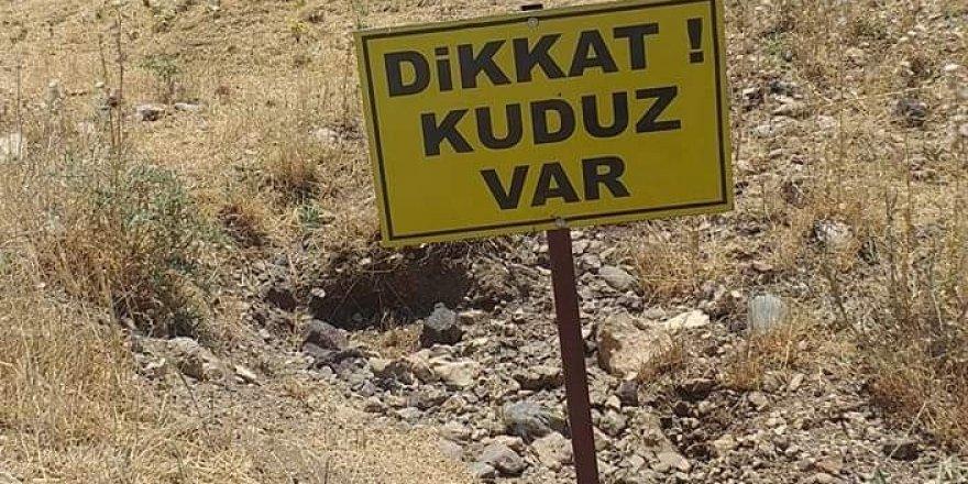 VİDEO - Diyarbakır'da köy karantinaya alındı