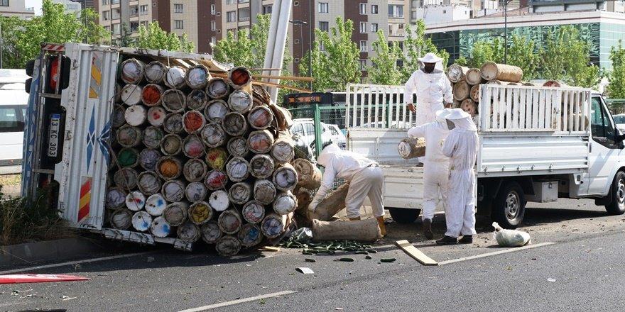 Diyarbakır'da trafik kazası sonrası firar eden arılar bulundu