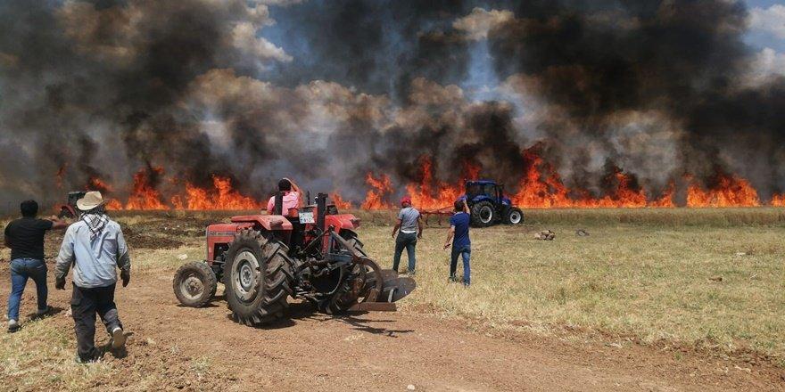 70 dönüm buğday tarlası kül oldu