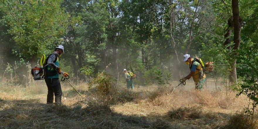Yenişehir'deki fidanlık alanında temizlik çalışması