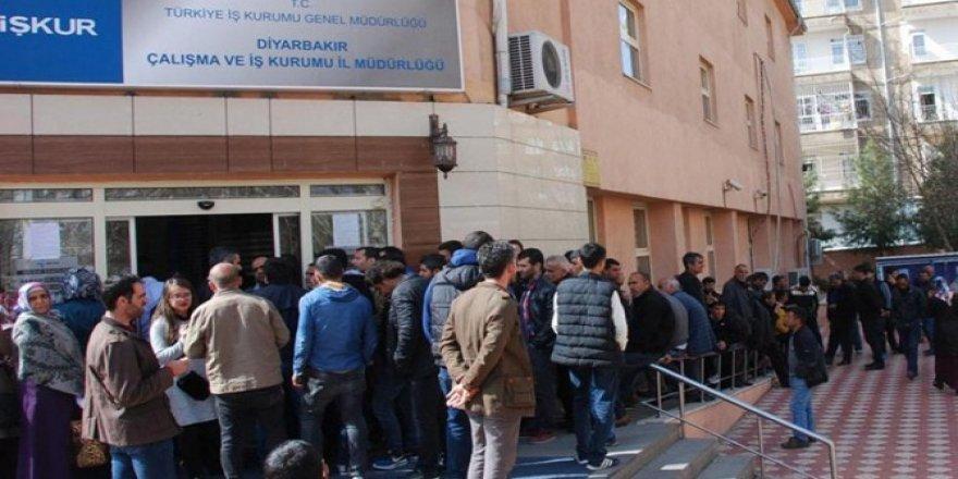 Diyarbakır İş-Kur'dan 147 üniversite öğrencisine iş imkanı