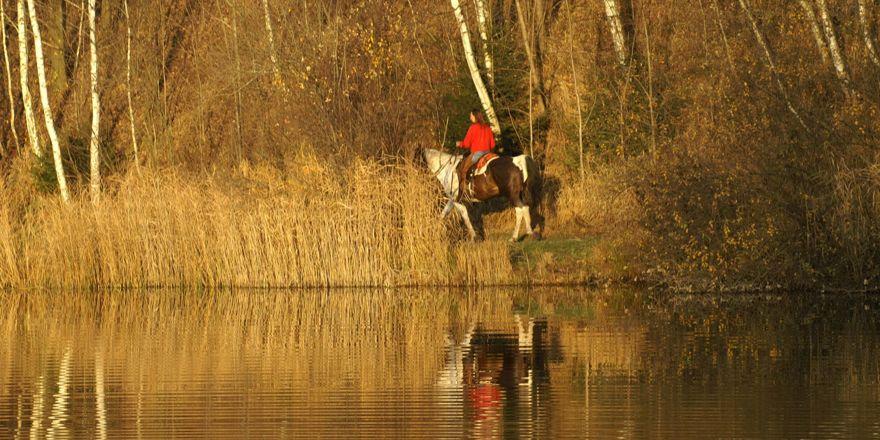 Atla gezerken gölete düşen genç boğuldu