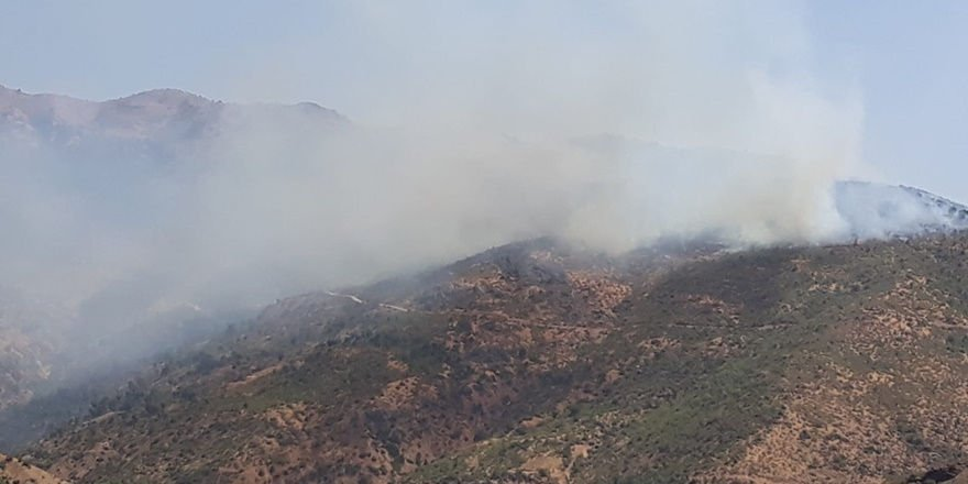 Batman Kozluk'ta orman yangını
