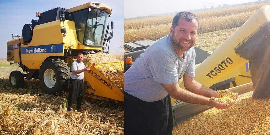 Diyarbakır'da dane mısır hasadı başladı