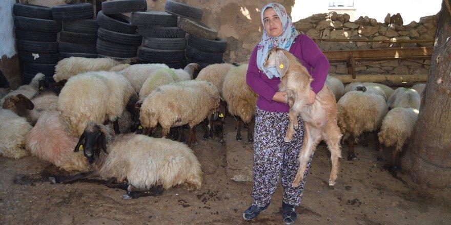 Kadın çiftçinin projesi Türkiye ikincisi oldu