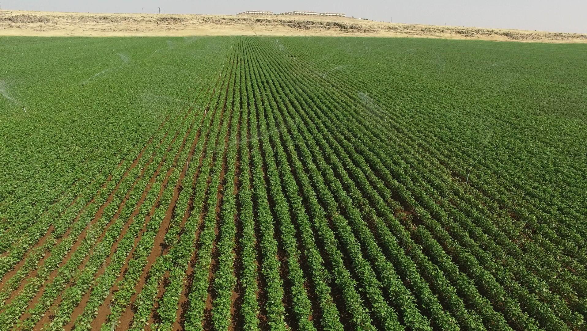 Diyarbakırlı çiftçilere sulama ödemesi yapıldı