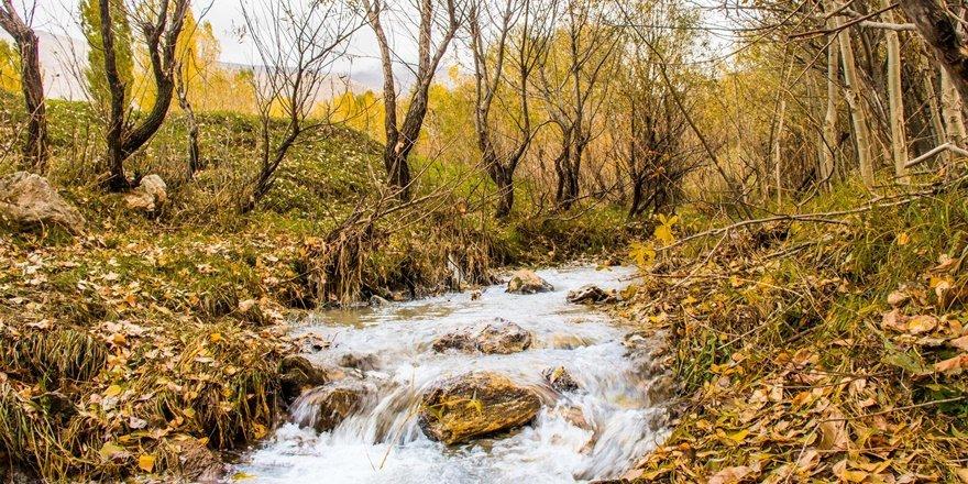 Bitlis'te sonbahar renkleri