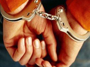 Hakkari'deki fuhuş operasyonunda bir tutuklama
