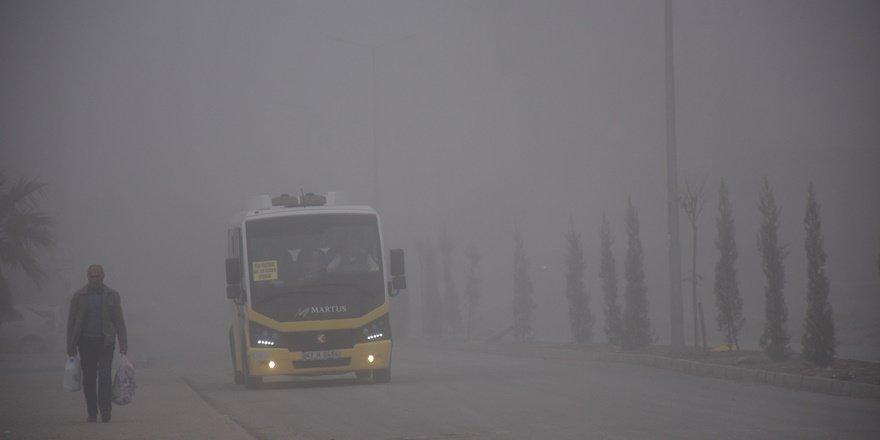 Nusaybin'de yoğun sis
