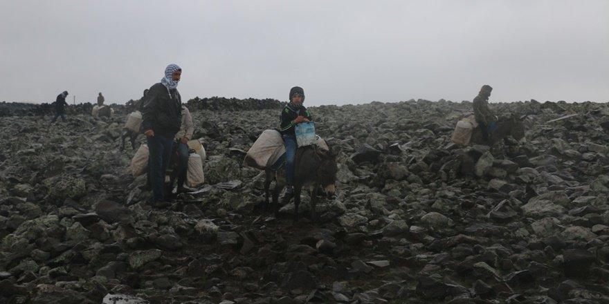 Karacadağ'da eşek sırtında su çilesi