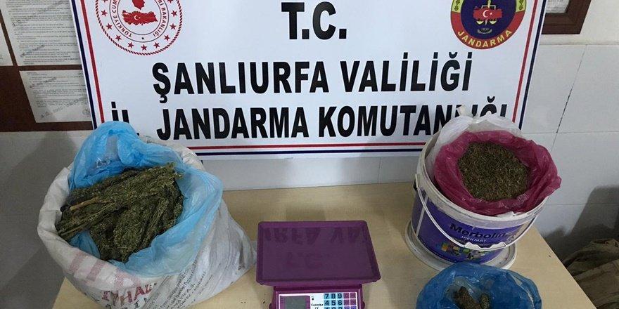 Şanlıurfa'daki narkotik operasyonunda 6 tutuklama
