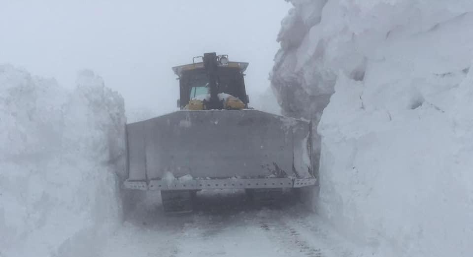 Sınırda karla mücadele