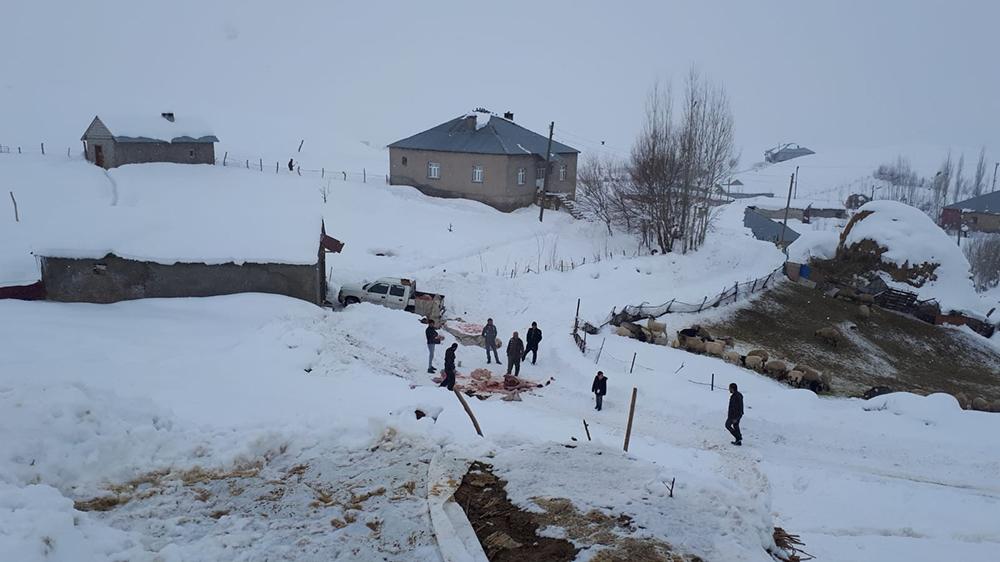 Kardan dolayı ahır çöktü, 4 hayvan telef oldu