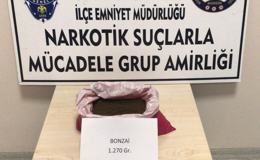 Mardin'de 1 kilo 270 gram bonzai ele geçirildi