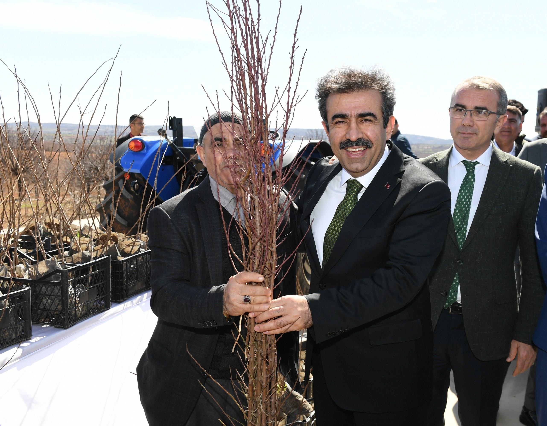 VİDEO - Diyarbakır'da badem ve fıstık üreticisine destek