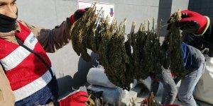 Diyarbakır'da 305 kilogram esrar ele geçirildi