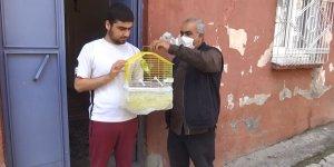 -VİDEO - Muhabbet kuşundan vatandaşlara 'evde kal Türkiye' çağrısı
