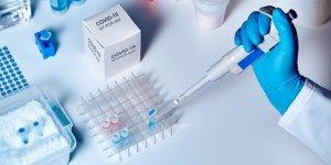 Çin'den corona virüs araştırması: Hastalar virüse karşı antikor geliştirdi