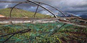 Çiftçiye doğal afet tazminatı sağlandı