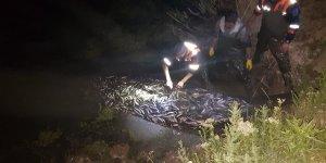 20 ton canlı inci kefali kurtarıldı