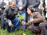 Berkin Elvan'ın anne ve babası, çocuklarının adına yapılan ormana ceviz fidanı dikti