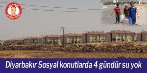 VİDEO - Diyarbakır Sosyal konutlarda 4 gündür su yok