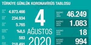 Türkiye'de koronavirüs nedeniyle 18 kişi daha hayatını kaybetti