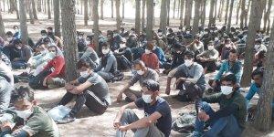 Diyarbakır'da 142 düzensiz göçmen yakalandı