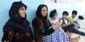 VİDEO - Anadolu'nun tapusuz insanları Domlar