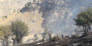 Şırnak'ta ağaçlık alanda yangın