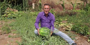 Hakkarili çiftçi: Diyarbakır karpuzuna rakibiz