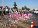 Devrilen Kamyondan Yola Savrulan Yumurtaları Vatandaş Topladı